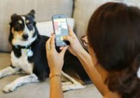 app per i cani